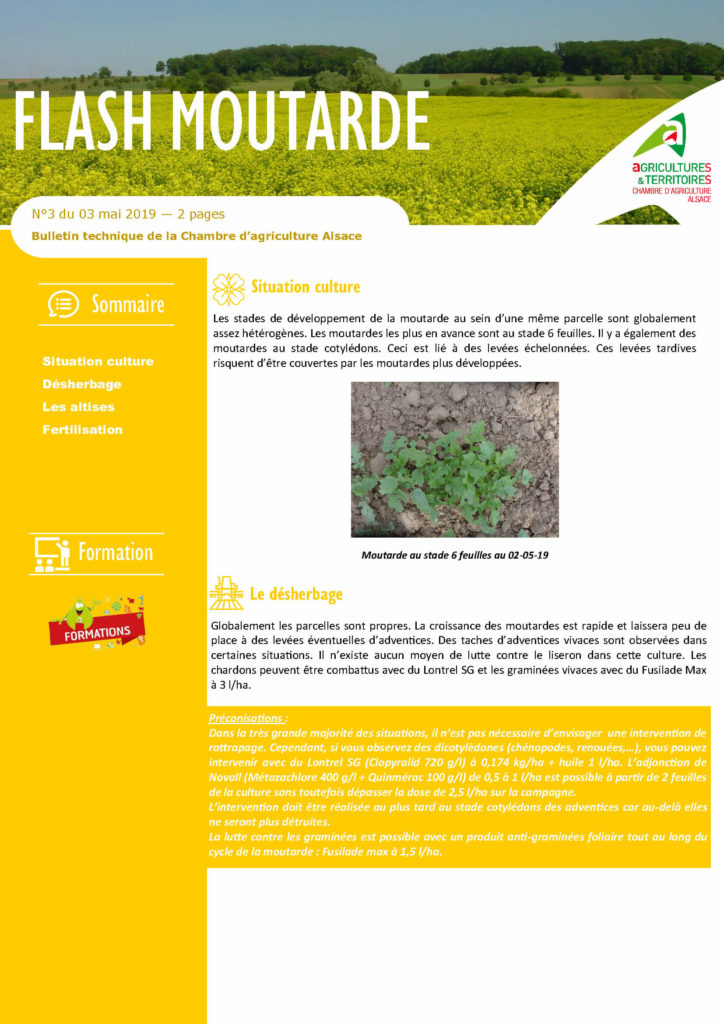 Exemple flash moutarde - Mes services Agricoles - Chambre d'Agriculture Alsace